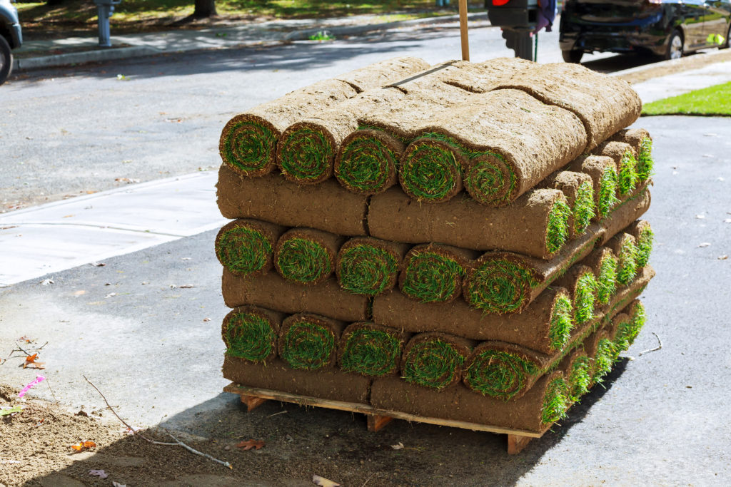 stacks Grass turf in rolls ready to be used for gardening or landscaping of sod rolls for new lawn