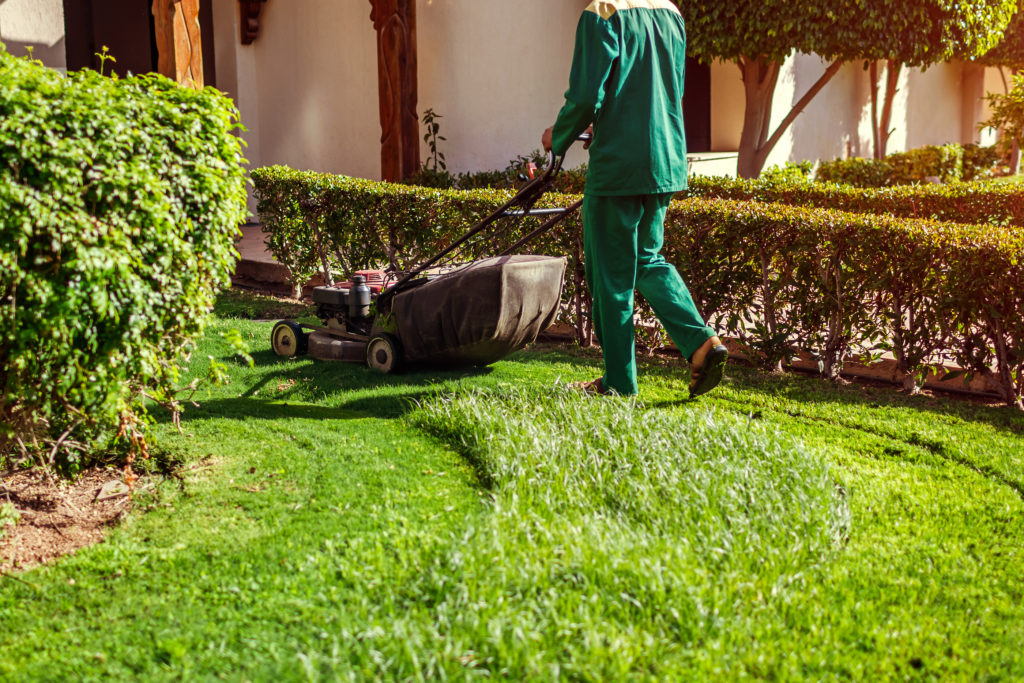 Man Mowing The Grass With A Lawn Mower By Hotel. Worker Cuts The